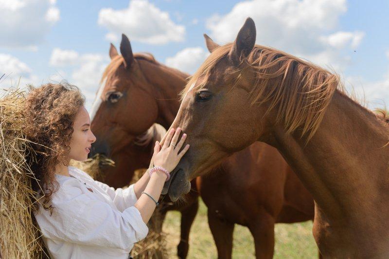 девушка, деревня, лошадь, лошади, сено, спокойствие, дружба Дружбаphoto preview