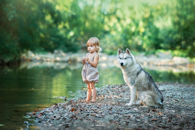 лето, summer, река, вода, портрет, ребенок, дети, собака, dog, хаски, people, happy, 105mm, kid, children, river, beautiful, magik, волшебство ***photo preview