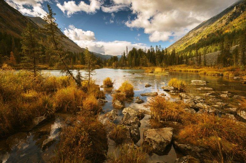 алтай, озеро, горы, лес, природа, закат, рассвет, красота, приключения, путешествие Золотыми красками разлилась осеньphoto preview