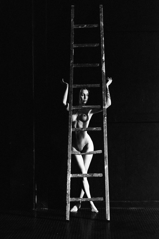 woman, portrait, nude, indoors, blackandwhite, naturallight The Ladderphoto preview