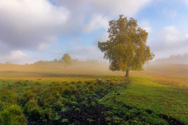 утро, рассвет, восход, туман, лучи Осенние зарисовкиphoto preview