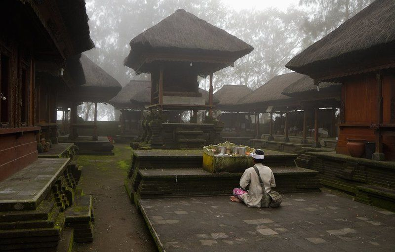 туман Дом Тишиныphoto preview