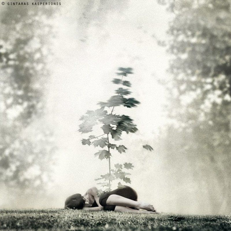 art, arts, artistic, fine, photography, foto, photo, modern, conceptual, feeling, emotion, square, 1x1, toned, gintaras, kasperionis, original, idea, gallery, pentax, contemporary, artwork, mono, woman, girl, sleeping, tree Gravityphoto preview