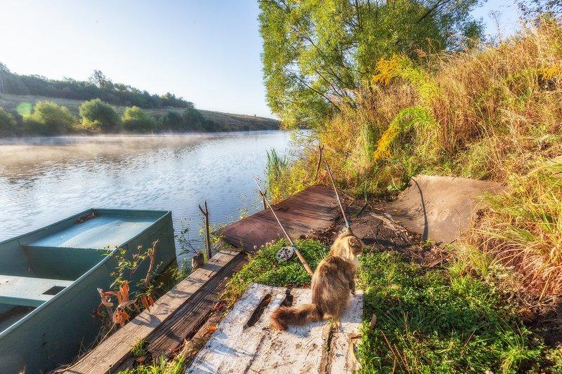 речка, утро, рыбалка Уходи, занято!photo preview