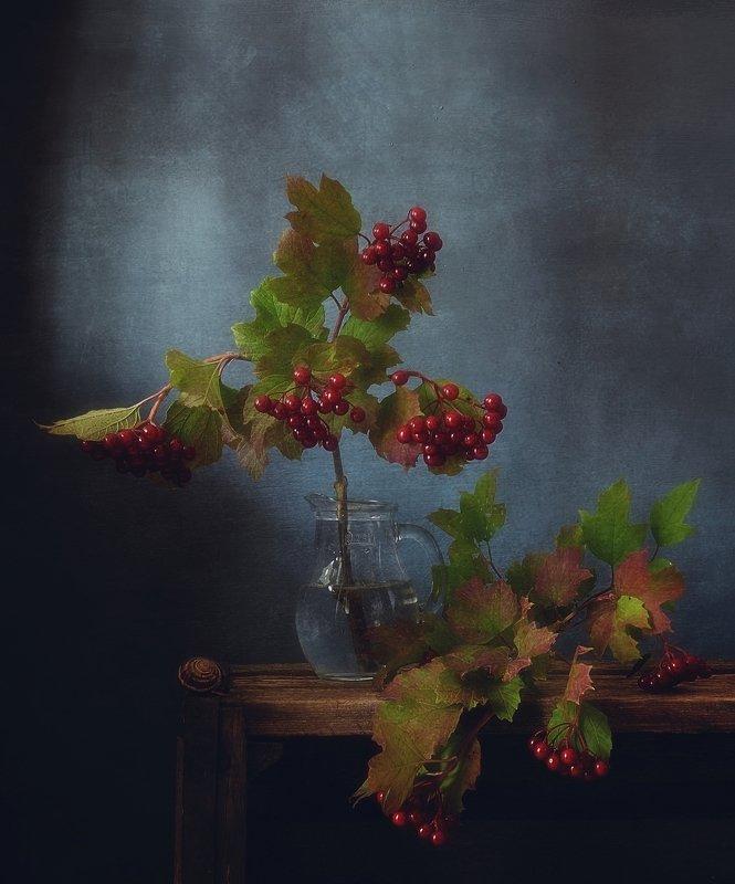 натюрморт,калина,ягоды,осень натюрморт с калиной...photo preview
