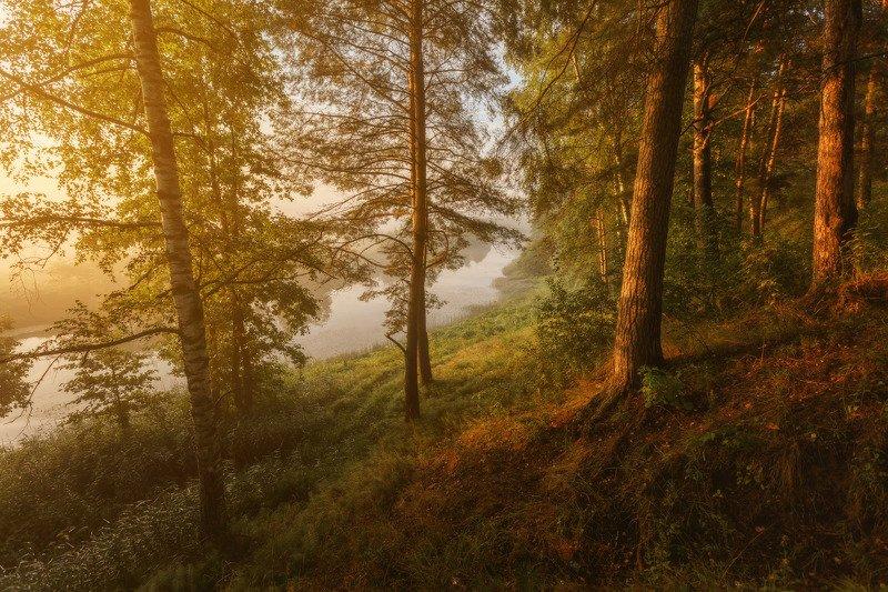 озеро, горы, лес, природа, закат, рассвет, красота, приключения, путешествие, облака, урал По родным уголкамphoto preview