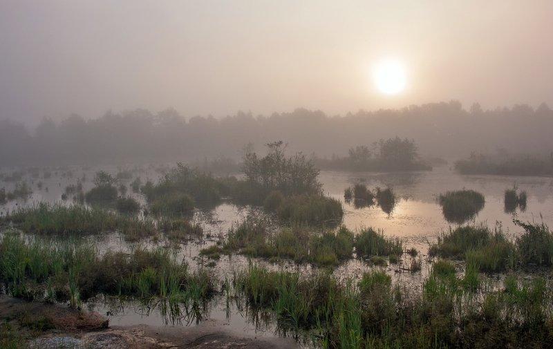 Туманно-болотное утроphoto preview