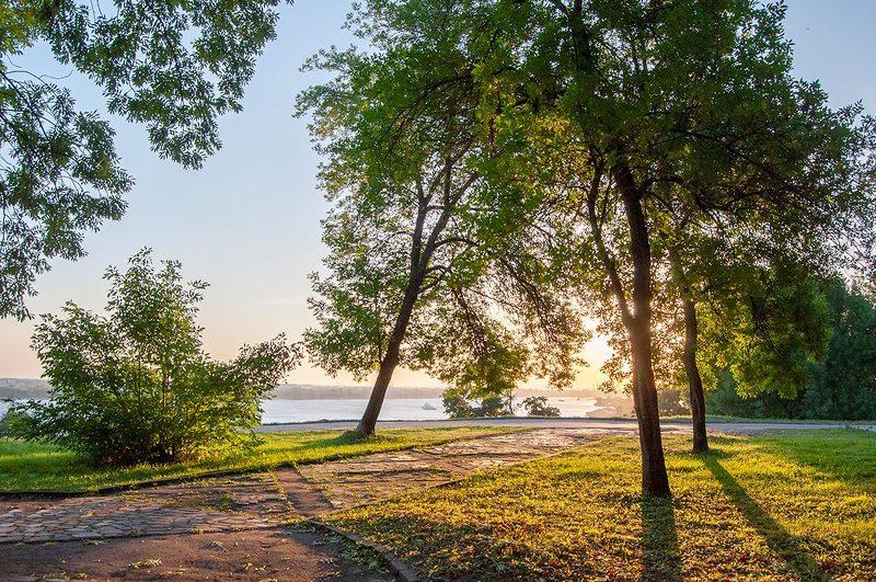утро, рассвет, солнце, лето ***photo preview
