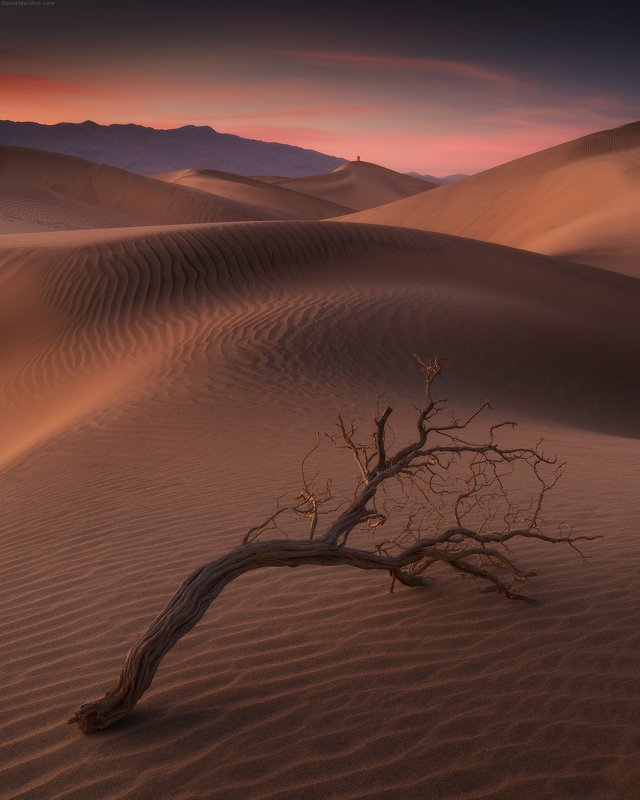 Death valleyphoto preview