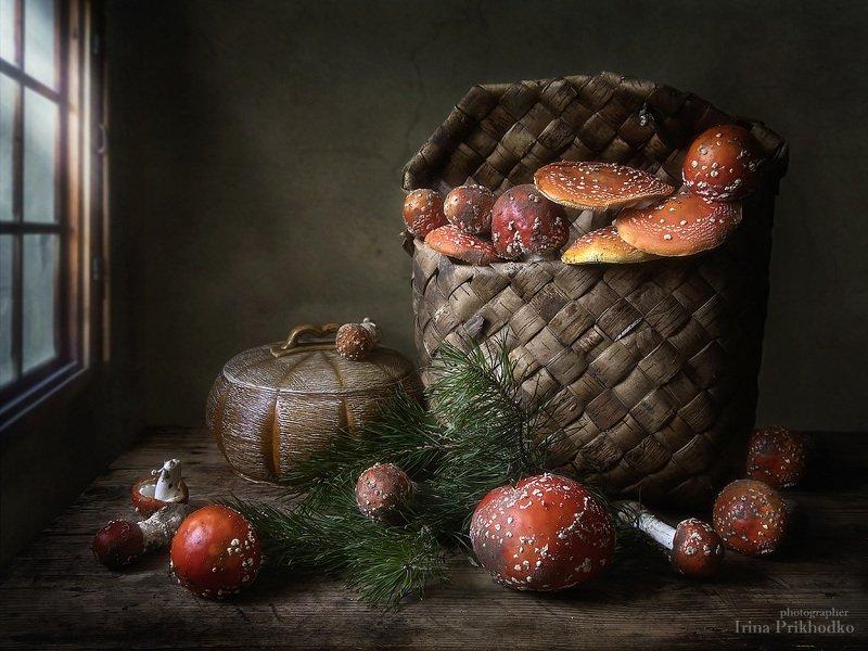 натюрморт, осень, грибы, мухоморы, ядовитые грибы, деревенский стиль Красота - страшная силаphoto preview