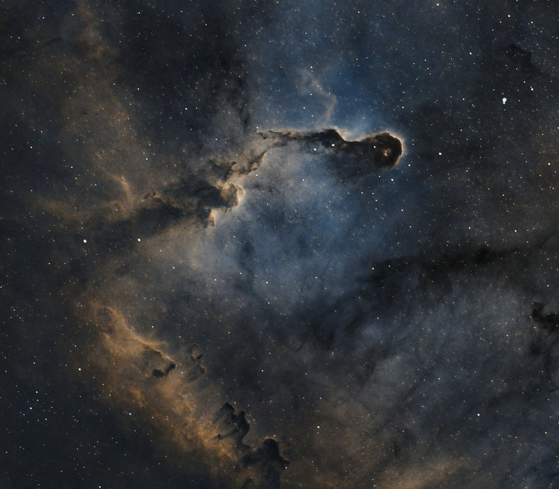 elephant trunk, nebula, astrophoto, astro, space, stars Elephant trunk nebula, Cepheusphoto preview