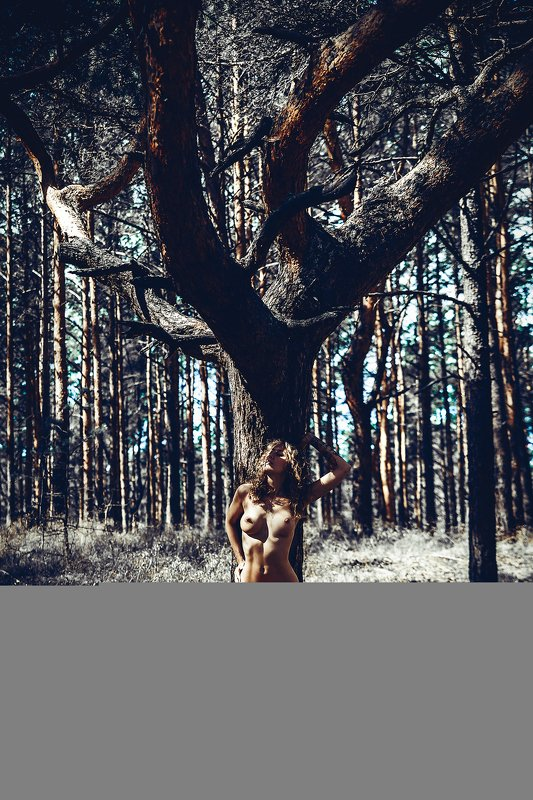 woman, portrait, nude, outdoors, natural light The Rootsphoto preview