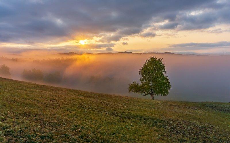 утро, рассвет, восход, туман, лучи Осенний этюдphoto preview
