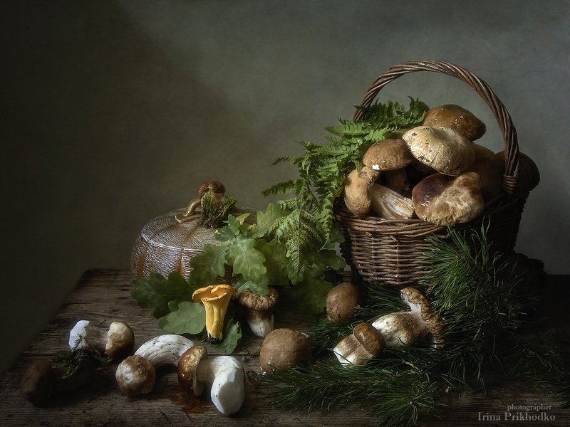 натюрморт, грибы, осень, лесные , боровики, белые грибы, деревенский Наступает грибная пораphoto preview