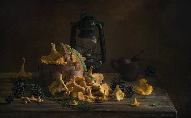 лисички,натюрморт,грибы Лисичкиphoto preview