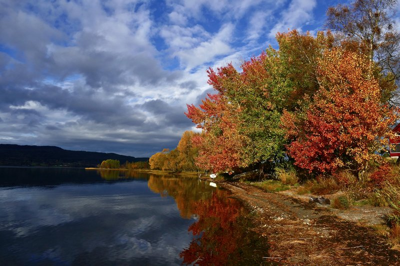 landscape, nature, autumn, fall, colorful, colors, water, lake, Norway, reflection, sky, clouds, trees,  У озераphoto preview