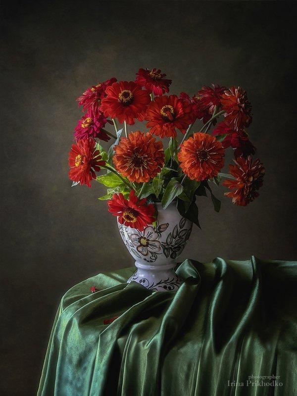 натюрморт, цветы, цветочный, цинии, букет Огненные цинииphoto preview