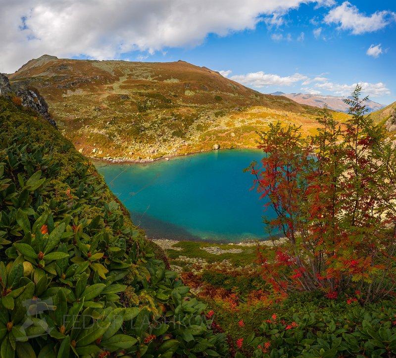 горы, кавказ, кавказские горы, архыз, осень, дуккинские озёра, озеро, рябина, горное озеро, дуккинское, озеро рыбка, Краски осени в Архызеphoto preview
