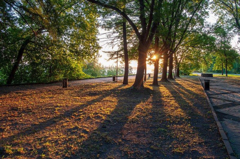 утро, рассвет, город, парк, лето Утро в городском паркеphoto preview