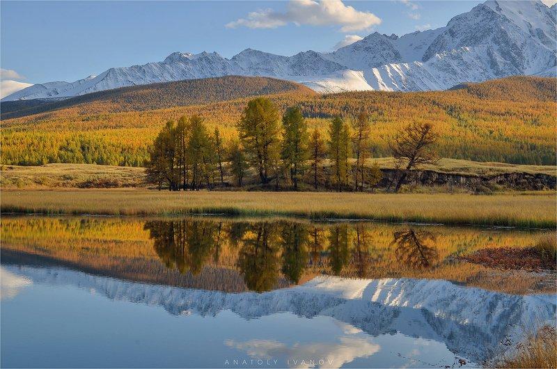 республика алтай, урочище ештыкёль, озеро джангысколь, северо-чуйский хребет Осенние краски Алтаяphoto preview