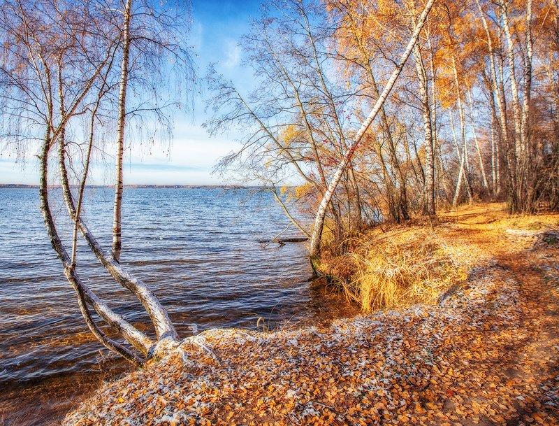 осень, подмосковье, лес, снег, тропинка Изгибы осени.photo preview