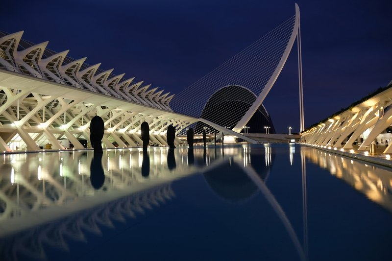 city/architecture, night, travel, Calatrava, architecture, moderne, lines, reflection, art, science, Spain, Valencia, nightlight, city, urban, Линии Калатравыphoto preview