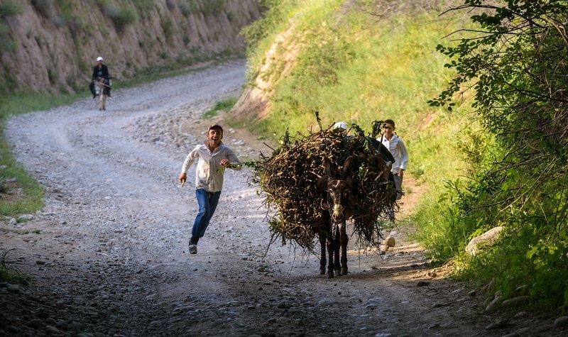 Памир Татджикистан ...photo preview