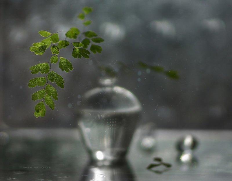 зелёненький*photo preview