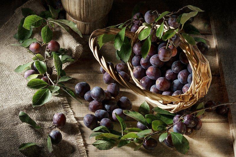 сливы, слива, фрукты, ягоды, еда, натюрморт, рустик, свет Сливыphoto preview