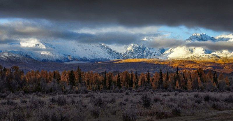 рассвет, утро, свет, горы, северо-чуйский, облака, солнце, тучи, осень Осеннее утро в горахphoto preview