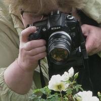 Portrait of a photographer (avatar) Vershinina Valentina (Valentina Vershinina)